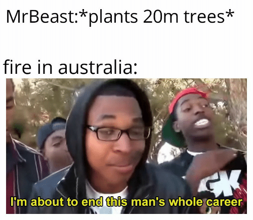 Fire: MrBeast:*plants 20m trees*  fire in australia:  CK  I'm about to end this man's whole career