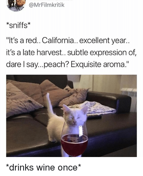 """Wine, California, and Girl Memes: @MrFilmkritik  *sniffs*  """"It's a red.. California.. excellent year..  it's a late harvest.. subtle expression of,  dare l say....peach? Exquisite aroma."""" *drinks wine once*"""