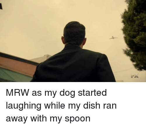 mrw as my dog started laughing while my dish ran away with my spoon