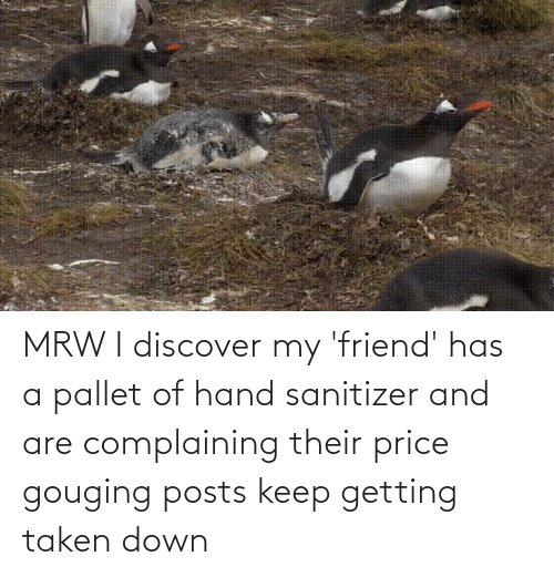 Price Gouging: MRW I discover my 'friend' has a pallet of hand sanitizer and are complaining their price gouging posts keep getting taken down