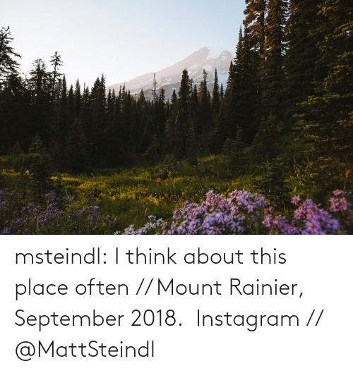 M: msteindl: I think about this place often // Mount Rainier, September 2018.    Instagram // @MattSteindl