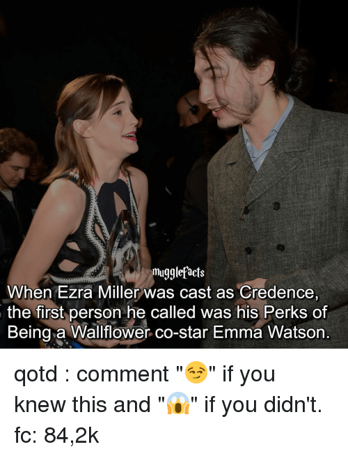 """Casted: muggle facts  When Ezra Miller was cast as Credence,  the first person he called was his Perks of  Being a Wallflower co-star Emma Watson qotd : comment """"😏"""" if you knew this and """"😱"""" if you didn't. fc: 84,2k"""