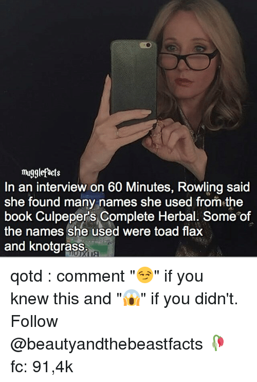 "Toade: mugglefacts  In an interview on 60 Minutes, Rowling said  She found many names she used from the  book Culpepers Complete Herbal. Some of  the names she used were toad flax  and knotgrass qotd : comment ""😏"" if you knew this and ""😱"" if you didn't. Follow @beautyandthebeastfacts 🥀 fc: 91,4k"