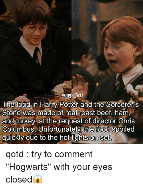 """roast beef: mugglefacts  The foodin Harry Potter and the Sorcerer's  Stone was made of real roast beef, ham  and turkey, at the request of director Chris  Columbus. Unfortunately, the food spoiled  quickly due to the hot lights on set qotd : try to comment """"Hogwarts"""" with your eyes closed😱"""