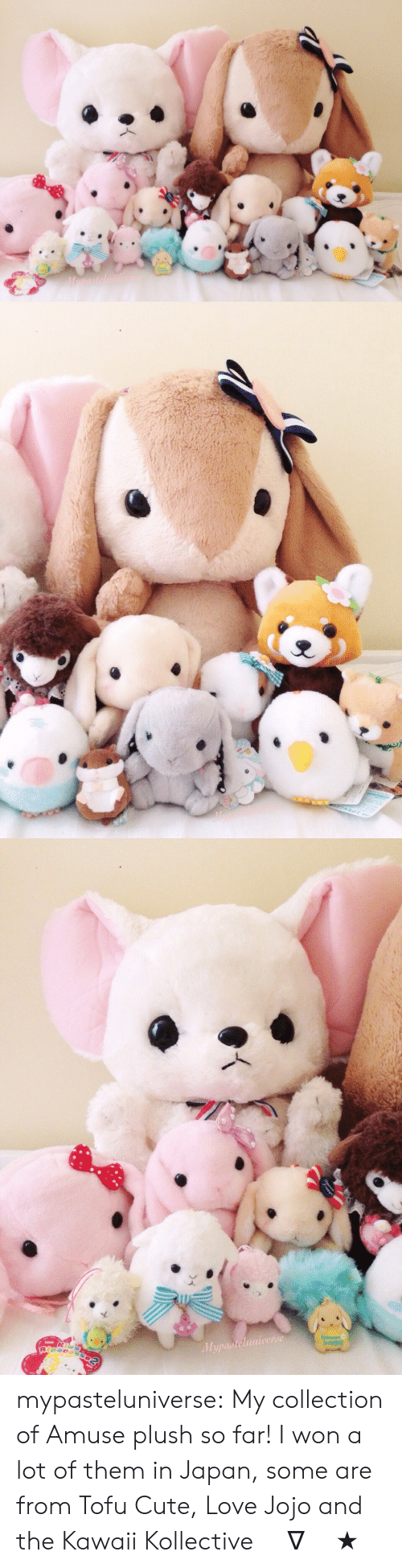 tofu: Mupasteluniverde mypasteluniverse:  My collection of Amuse plush so far! I won a lot of them in Japan, some are from Tofu Cute, Love Jojo and the Kawaii Kollective (^∇^)★彡