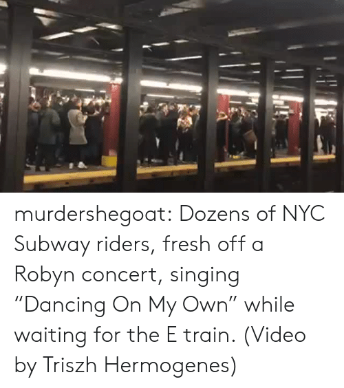 "Fresh, Singing, and Subway: murdershegoat: Dozens of NYC Subway riders, fresh off a Robyn concert, singing ""Dancing On My Own"" while waiting for the E train. (Video by Triszh Hermogenes)"