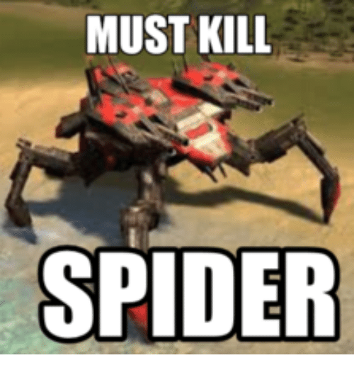 25 Best Memes About Spider Kill It With Fire Spider Kill It
