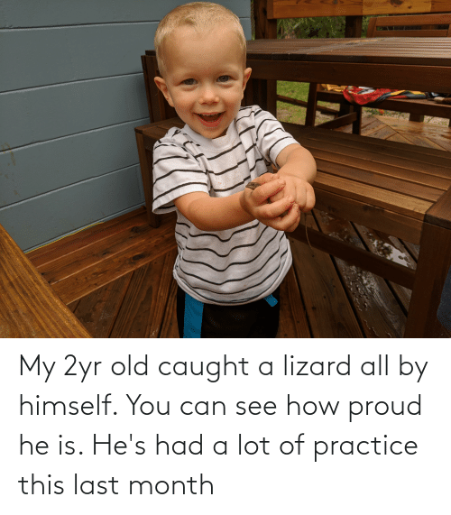 lizard: My 2yr old caught a lizard all by himself. You can see how proud he is. He's had a lot of practice this last month