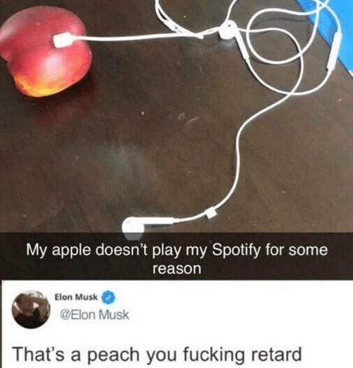 Apple, Fucking, and Spotify: My apple doesn't play my Spotify for some  reason  Elon Musk  @Elon Musk  That's a peach you fucking retard