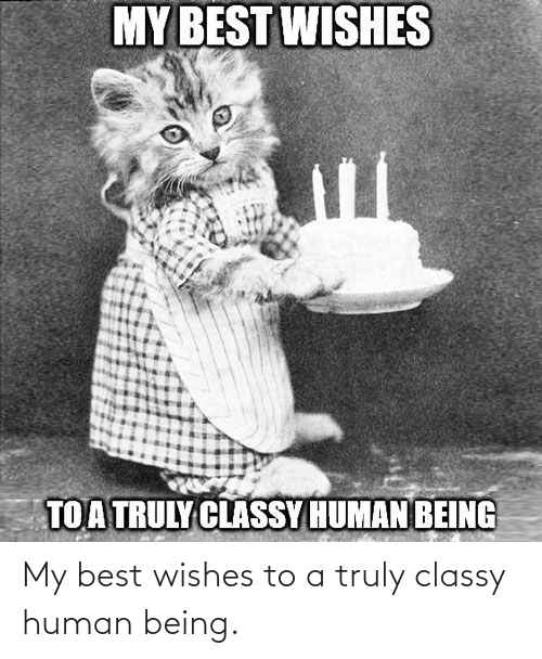 Best, Human, and Human Being: MY BEST WISHES  TOATRULY CLASSY HUMANBEING My best wishes to a truly classy human being.