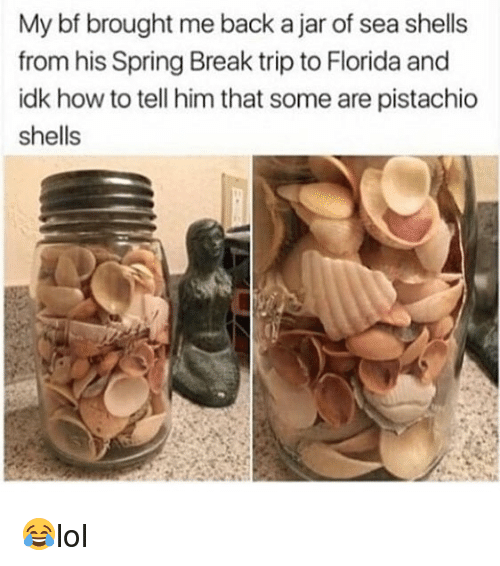 Jarreds: My bf brought me back a jar of sea shells  from his Spring Break trip to Florida and  idk how to tell him that some are pistachio  shells 😂lol