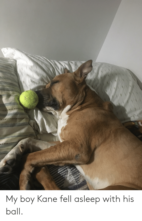 kane: My boy Kane fell asleep with his ball.