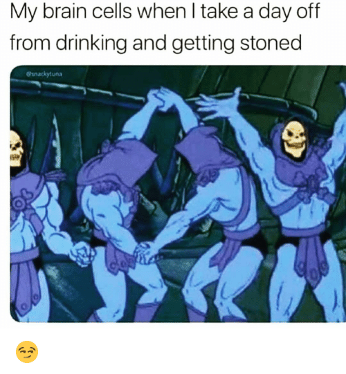 Drinking, Funny, and Brain: My brain cells when l take a day off  from drinking and getting stoned  esnackytuna 😏