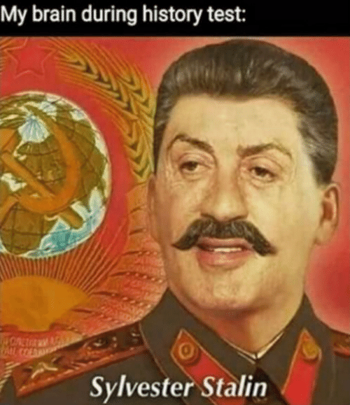 sylvester: My brain during history test:  0  Sylvester Stalin