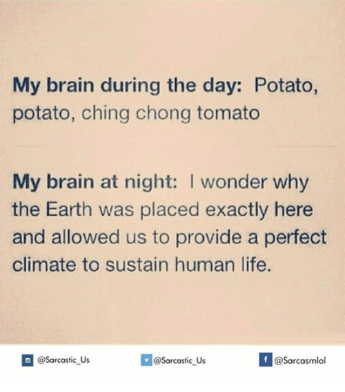 Chinges: My brain during the day: Potato,  potato, ching chong tomato  My brain at night: I wonder why  the Earth was placed exactly here  and allowed us to provide a perfect  climate to sustain human life.  If @Sarcastic US  @sarcastic Us  @Sarcasmlol