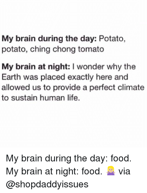 Chinges: My brain during the day: Potato,  potato, ching chong tomato  My brain at night: I wonder why the  Earth was placed exactly here and  allowed us to provide a perfect climate  to sustain human life. My brain during the day: food. My brain at night: food. 🤷🏼♀️ via @shopdaddyissues