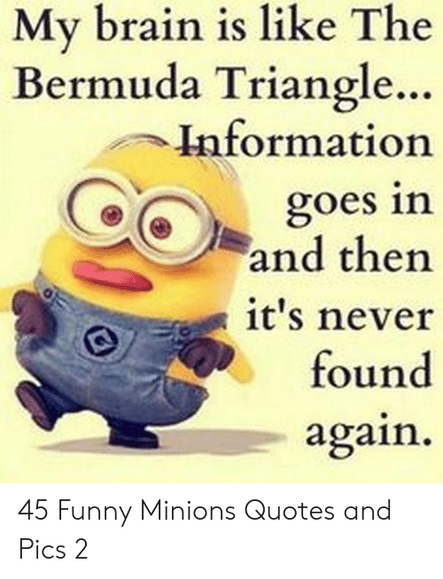 triangle: My brain is like The  Bermuda Triangle..  Information  goes in  and then  it's never  found  again 45 Funny Minions Quotes and Pics 2