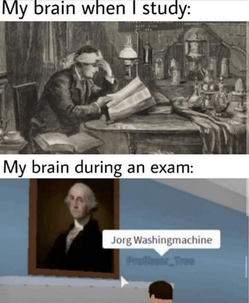 Brain, Tree, and Study: My brain when I study:  My brain during an exam:  Jorg Washingmachine  Proffesor Tree