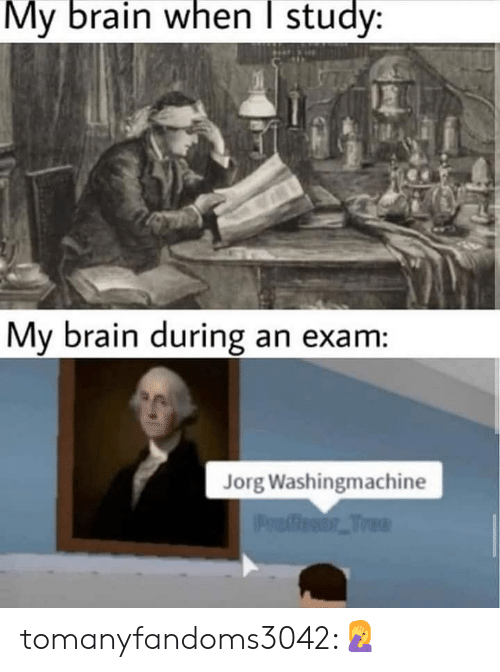 Tumblr, Blog, and Brain: My brain when I study:  My brain during an exam:  Jorg Washingmachine  Proffesor Tree tomanyfandoms3042:🤦‍♀️