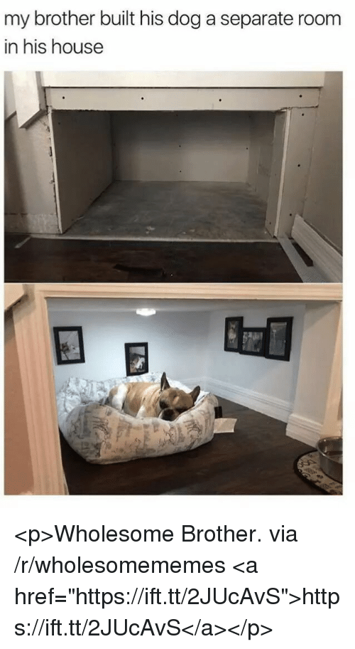 """House, Wholesome, and Dog: my brother built his dog a separate room  in his house <p>Wholesome Brother. via /r/wholesomememes <a href=""""https://ift.tt/2JUcAvS"""">https://ift.tt/2JUcAvS</a></p>"""
