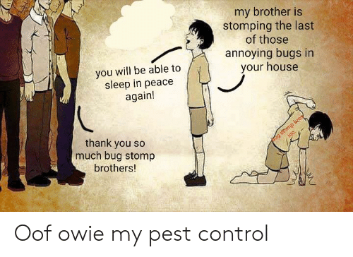 Control, Thank You, and House: my brother is  stomping the last  of those  annoying bugs in  your house  you will be able to  sleep in peace  again!  Jug stomp bcose  inc.  thank you so  much bug stomp  brothers! Oof owie my pest control