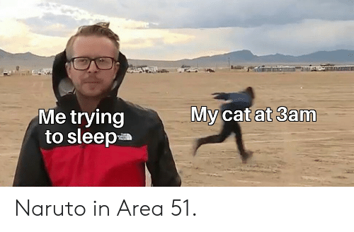 Naruto: My cat at 3am  Me trying  to sleep Naruto in Area 51.