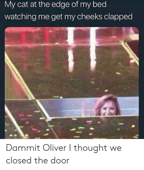 Thought, Cat, and Edge: My cat at the edge of my bed  watching me get my cheeks clapped Dammit Oliver I thought we closed the door