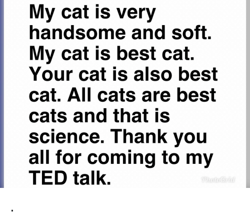 Cats, Ted, and Thank You: My cat is very  handsome and soft.  My cat is best cat.  Your cat is also best  cat. All cats are best  cats and that is  science. Thank you  all for coming to my  TED talk. .