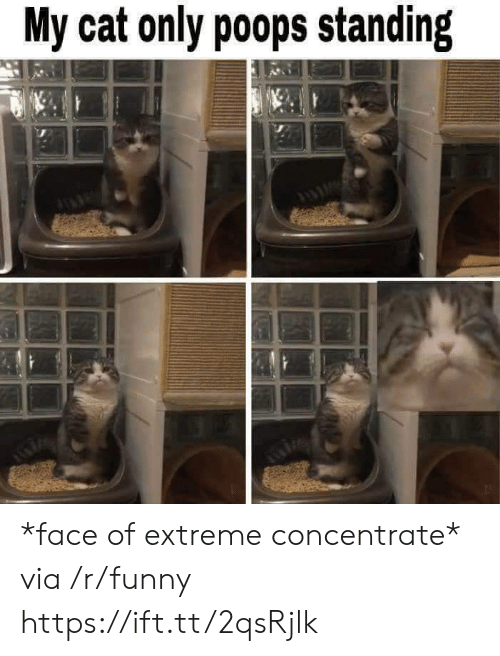 Funny, Cat, and Extreme: My cat only poops standing *face of extreme concentrate* via /r/funny https://ift.tt/2qsRjlk