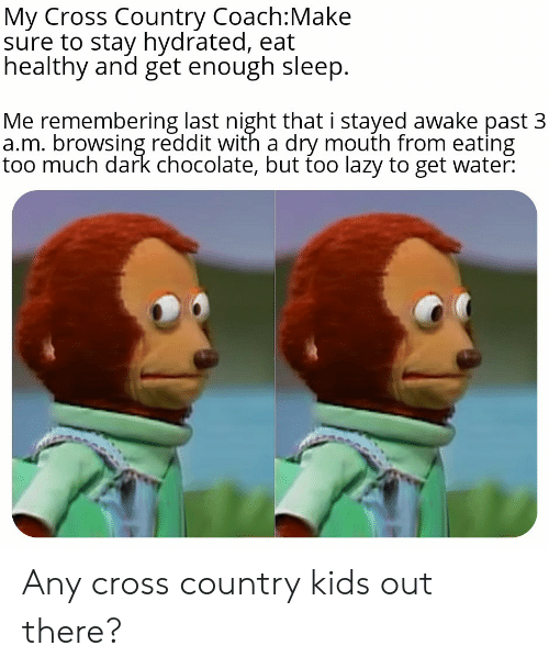 Lazy, Reddit, and Too Much: My Cross Country Coach:Make  sure to stay hydrated, eat  healthy and get enough sleep.  Me remembering last night that i stayed awake past 3  a.m. browsing reddit with a dry mouth from eating  too much dark chocolate, but too lazy to get water: Any cross country kids out there?