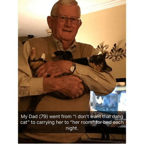"""Dad, Her, and Cat: My Dad (79) went from """"I don't want that dang  cat"""" to carrying her to """"her room"""" for bed each  night."""