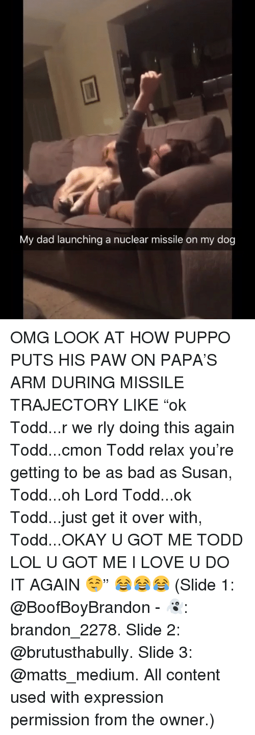 "Bad, Dad, and Do It Again: My dad launching a nuclear missile on my dog OMG LOOK AT HOW PUPPO PUTS HIS PAW ON PAPA'S ARM DURING MISSILE TRAJECTORY LIKE ""ok Todd...r we rly doing this again Todd...cmon Todd relax you're getting to be as bad as Susan, Todd...oh Lord Todd...ok Todd...just get it over with, Todd...OKAY U GOT ME TODD LOL U GOT ME I LOVE U DO IT AGAIN 🤤"" 😂😂😂 (Slide 1: @BoofBoyBrandon - 👻: brandon_2278. Slide 2: @brutusthabully. Slide 3: @matts_medium. All content used with expression permission from the owner.)"