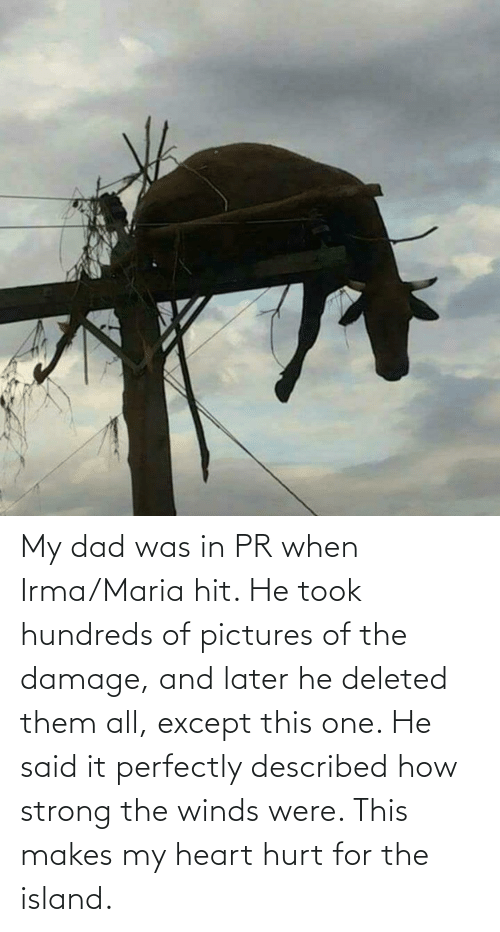 Perfectly: My dad was in PR when Irma/Maria hit. He took hundreds of pictures of the damage, and later he deleted them all, except this one. He said it perfectly described how strong the winds were. This makes my heart hurt for the island.