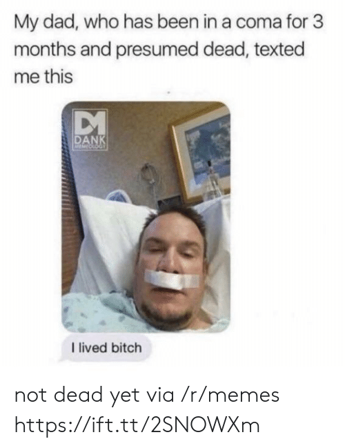 I Lived Bitch: My dad, who has been in a coma for 3  months and presumed dead, texted  me this  DANK  I lived bitch not dead yet via /r/memes https://ift.tt/2SNOWXm