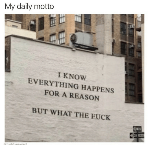 daily: My daily motto  I KNOW  EVERYTHING HAPPENS  FOR A REASON  BUT WHAT THE FUCK  WAY  @highfiveexnert  FF