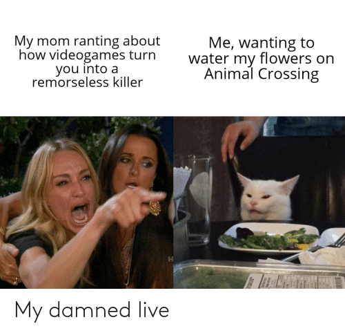 Funny, Live, and Damned: My damned live