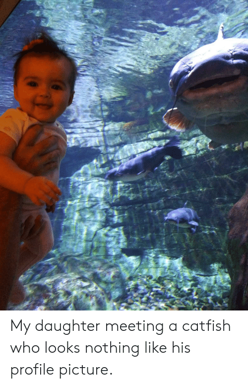 Catfished, Who, and Daughter: My daughter meeting a catfish who looks nothing like his profile picture.