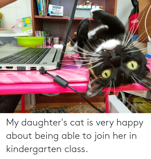 Daughters: My daughter's cat is very happy about being able to join her in kindergarten class.