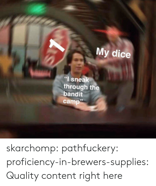 """Bilbo, Tumblr, and Blog: My dice  """"I snea  through the  bandit  camp""""  95 skarchomp: pathfuckery:  proficiency-in-brewers-supplies:   Quality content right here"""