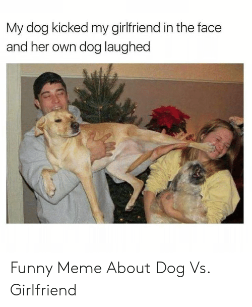 Funny, Meme, and Girlfriend: My dog kicked my girlfriend in the face  and her own dog laughed Funny Meme About Dog Vs. Girlfriend