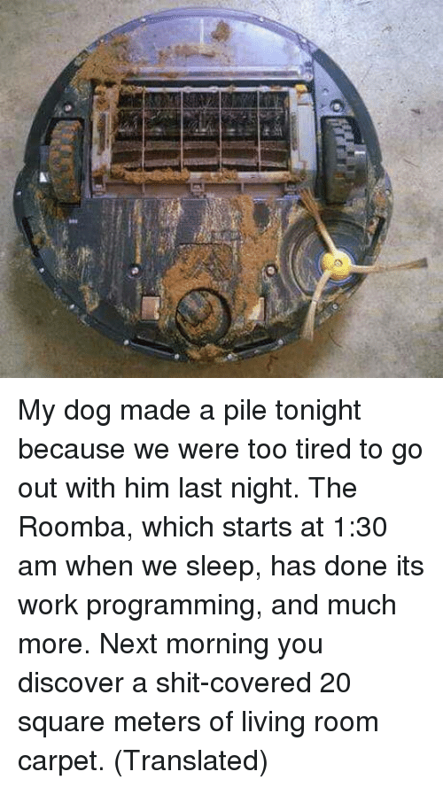 Shit, Roomba, and Work: My dog made a pile tonight because we were too tired to go out with him last night. The Roomba, which starts at 1:30 am when we sleep, has done its work programming, and much more. Next morning you discover a shit-covered 20 square meters of living room carpet. (Translated)