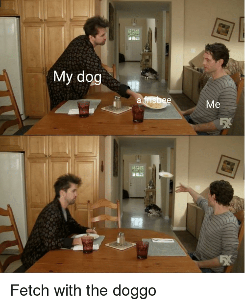 Doggo, Dog, and Fetch: My dog  Me Fetch with the doggo