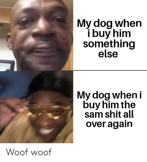 Reddit, Shit, and Something Else: My dog when  ibuy him  something  else  My dog when i  buy him the  sam shit all  over again Woof woof