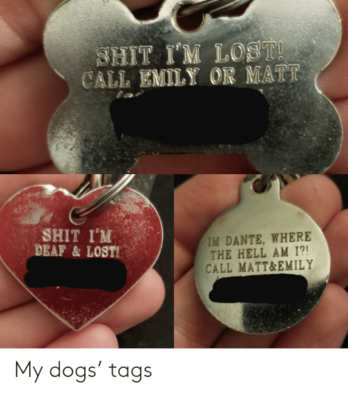 tags: My dogs' tags