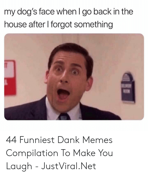 Memes Compilation: my dog's face when I go back in the  house after I forgot something 44 Funniest Dank Memes Compilation To Make You Laugh - JustViral.Net