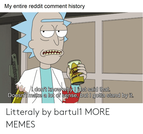 Commenter: My entire reddit comment history  nt Knowwny Just Salal tnat  Doesn't make a lot of sense, but I gotta stand by it Litteraly by bartul1 MORE MEMES