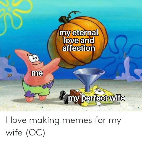 affection: my eternal  love and  affection  me  my perfect wife I love making memes for my wife (OC)