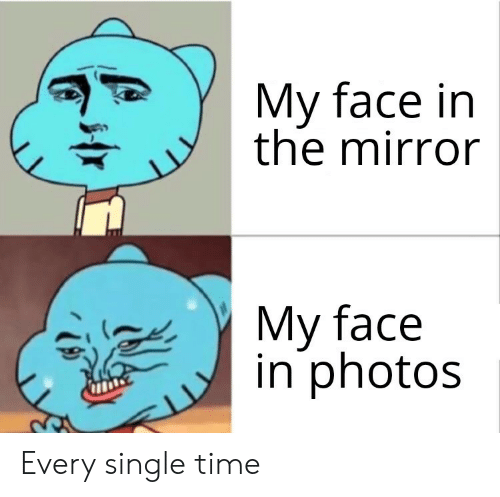 every-single-time: My face in  the mirror  My face  in photos Every single time