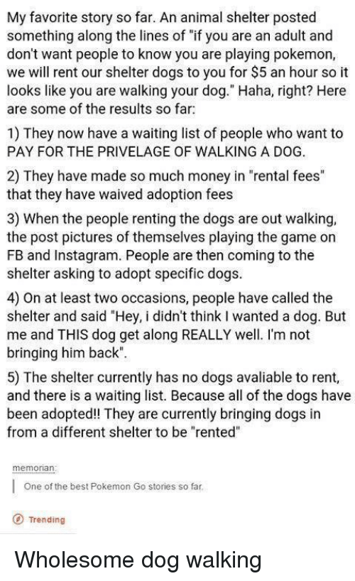 """renting: My favorite story so far. An animal shelter posted  something along the lines of """"if you are an adult and  don't want people to know you are playing pokemon,  we will rent our shelter dogs to you for $5 an hour so it  looks like you are walking your dog."""" Haha, right? Here  are some of the results so far  1) They now have a waiting list of people who want to  PAY FOR THE PRIVELAGE OF WALKING A DOG.  2) They have made so much money in """"rental fees""""  that they have waived adoption fees  3) When the people renting the dogs are out walking,  the post pictures of themselves playing the game on  FB and Instagram. People are then coming to the  shelter asking to adopt specific dogs  4) On at least two occasions, people have called the  shelter and said """"Hey, i didn't think I wanted a dog. But  me and THIS dog get along REALLY well. I'm not  bringing him back""""  5) The shelter currently has no dogs avaliable to rent,  and there is a waiting list. Because all of the dogs have  been adopted! They are currently bringing dogs in  from a different shelter to be """"rented""""  memonan  One of the best Pokemon Go stories so far  O Trending <p>Wholesome dog walking</p>"""