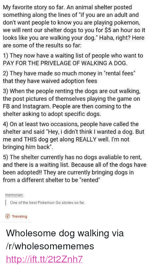 """renting: My favorite story so far. An animal shelter posted  something along the lines of """"if you are an adult and  don't want people to know you are playing pokemon,  we will rent our shelter dogs to you for $5 an hour so it  looks like you are walking your dog."""" Haha, right? Here  are some of the results so far  1) They now have a waiting list of people who want to  PAY FOR THE PRIVELAGE OF WALKING A DOG.  2) They have made so much money in """"rental fees""""  that they have waived adoption fees  3) When the people renting the dogs are out walking,  the post pictures of themselves playing the game on  FB and Instagram. People are then coming to the  shelter asking to adopt specific dogs  4) On at least two occasions, people have called the  shelter and said """"Hey, i didn't think I wanted a dog. But  me and THIS dog get along REALLY well. I'm not  bringing him back""""  5) The shelter currently has no dogs avaliable to rent,  and there is a waiting list. Because all of the dogs have  been adopted! They are currently bringing dogs in  from a different shelter to be """"rented""""  memonan  One of the best Pokemon Go stories so far  O Trending <p>Wholesome dog walking via /r/wholesomememes <a href=""""http://ift.tt/2t2Znh7"""">http://ift.tt/2t2Znh7</a></p>"""